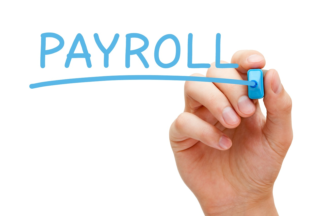napis payroll